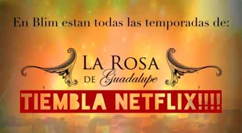 Blim-Rosa-de-Guadalupe