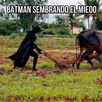 batman-sembrando-el-miedo