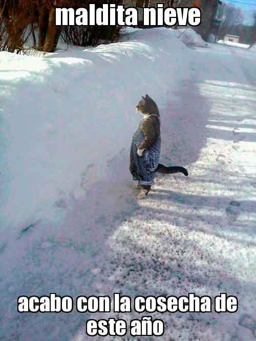 maldita-nieve